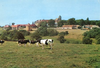 Igny, Abbaye Saint-Louis-du-Temple Limon, Vauhallan : Vue générale. Estel [années 1960-1970] - image/jpeg